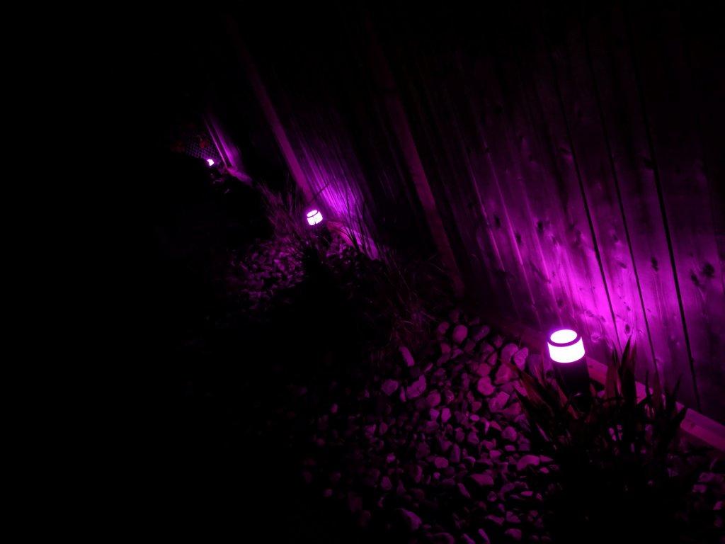 outdoor pink lighting