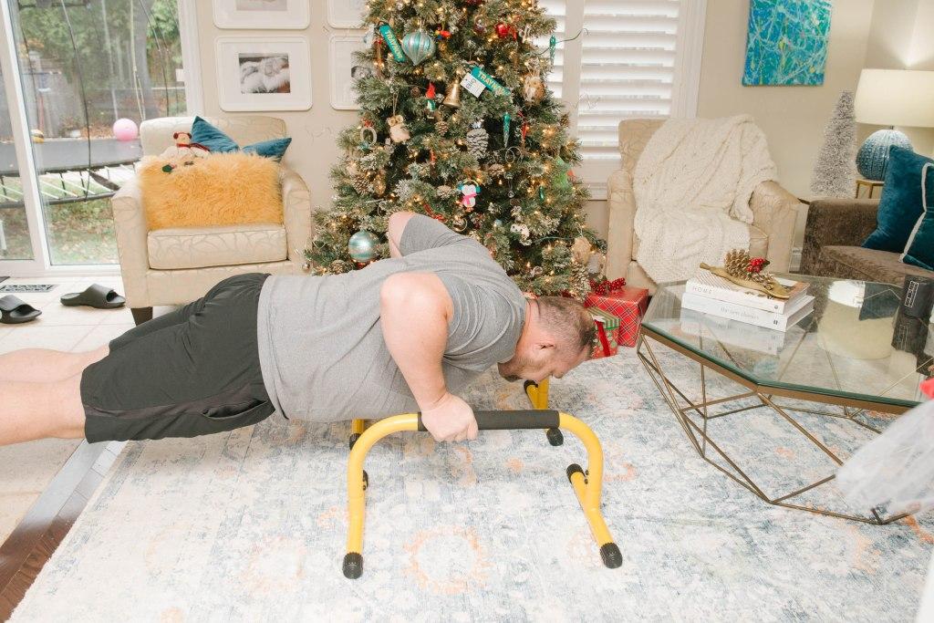 Lebert Fitness Paralettes