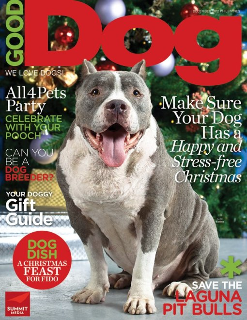 Collins: Cover of Good Dog Magazine December 2012 (just before he passed away)