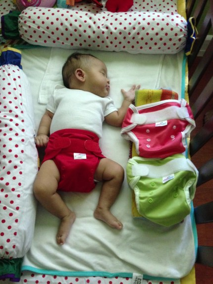 Zeeka in Cluebebe Diapers