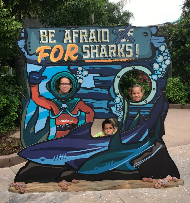 Sharks-Sea-World-Orlando