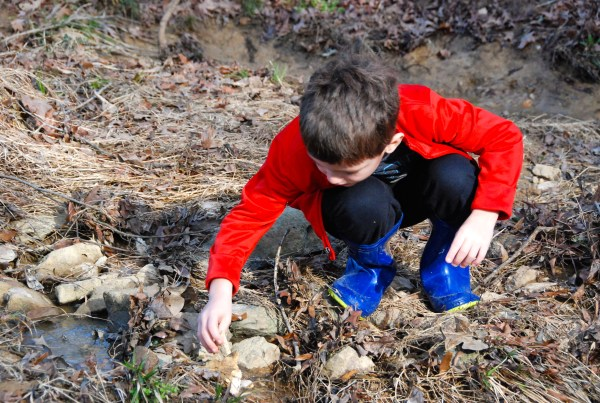 Charlie built about 5 different dams on the creek.