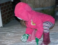 Maddie kept eating the snow.