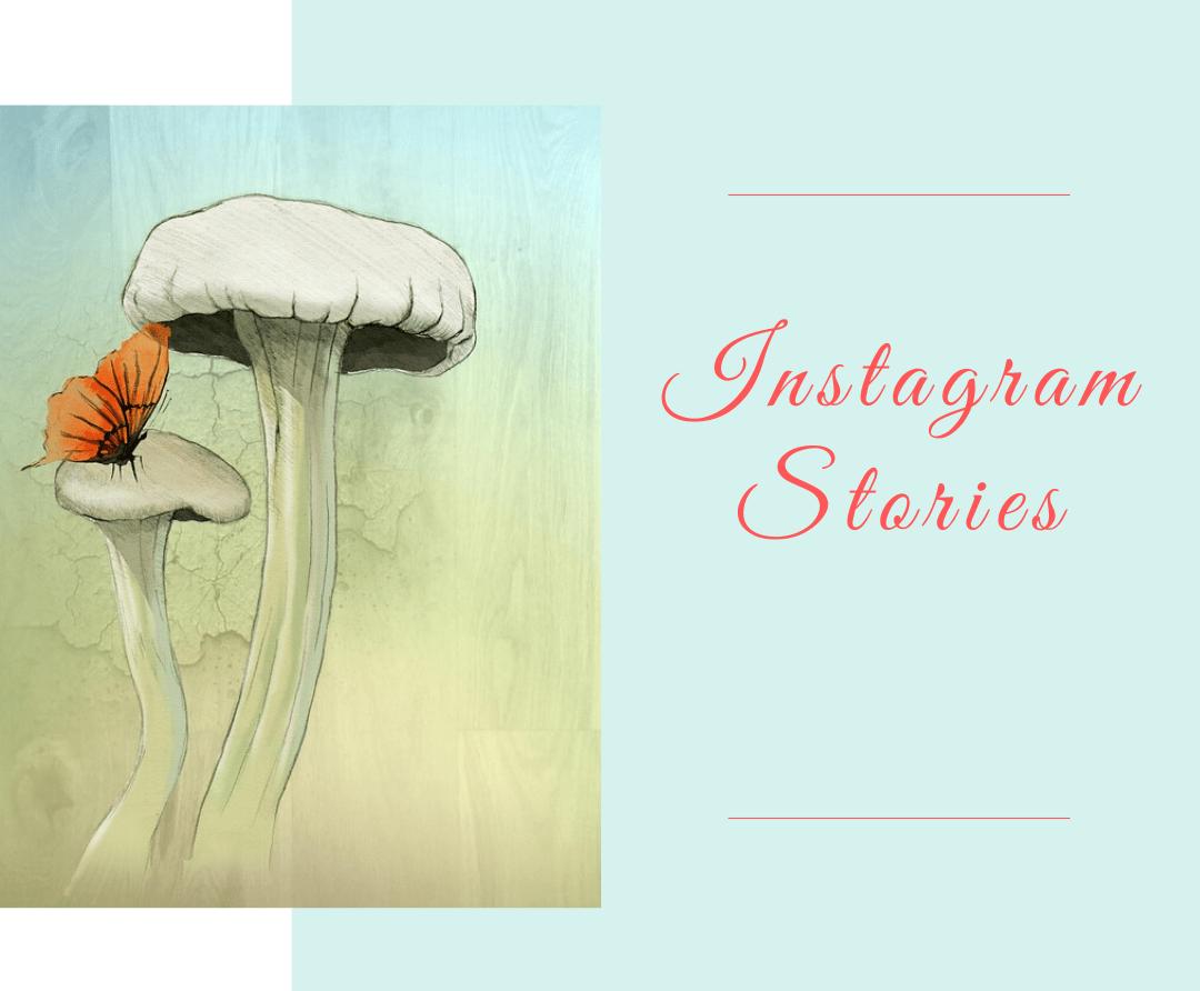 6 Best Apps for Instagram Stories