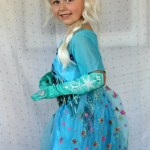 Frozen Elsa Dress Costume