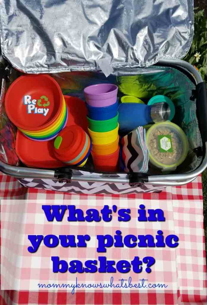 eco-friendly picnic basket