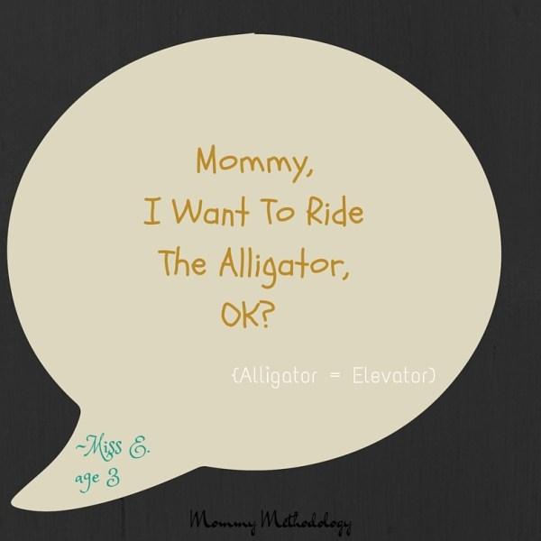 Alligator Quote