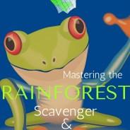 Mastering the Rainforest Treasure Hunt