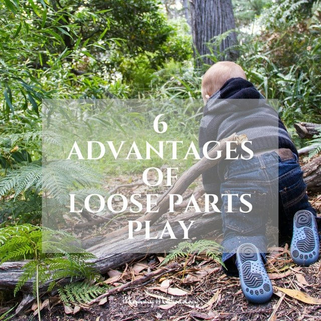 6 Advantages of Loose Parts Play - FB post | Loose Parts Play What Is It? Why is it important? See list of loose parts and 6 advantages. You'll want to engage in loose parts play after reading this!