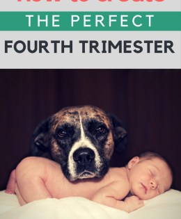 How To Create The Perfect Fourth Trimester