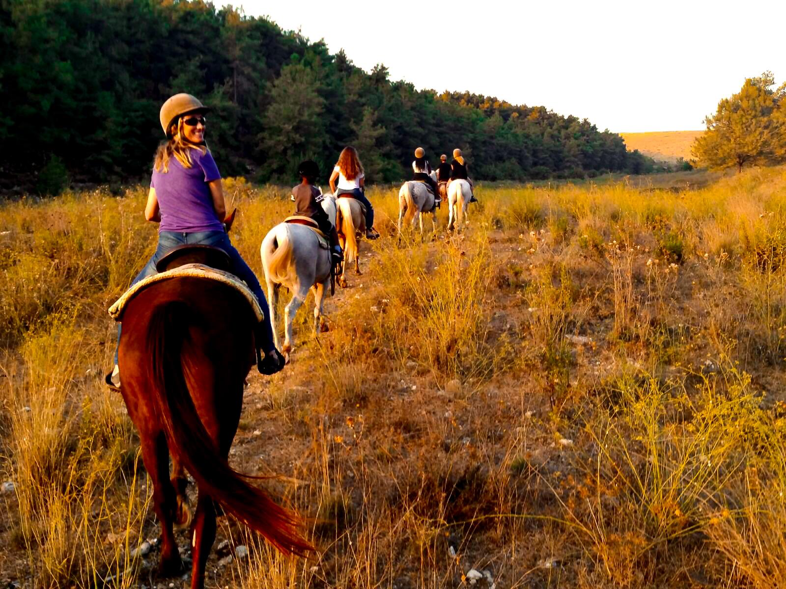 It's Fall, Yall! Horseback riding in Israel