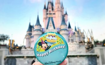 Birthday at Disney World
