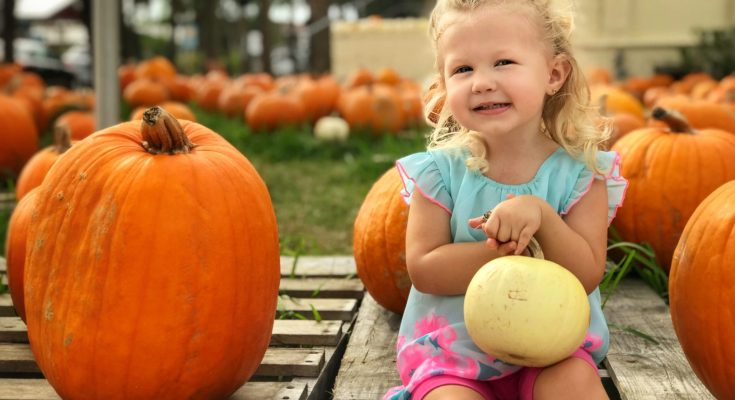 Get Toddler Ready for Halloween
