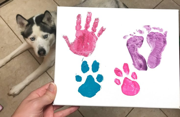 Baby and Pet Paw Print Canvas DIY