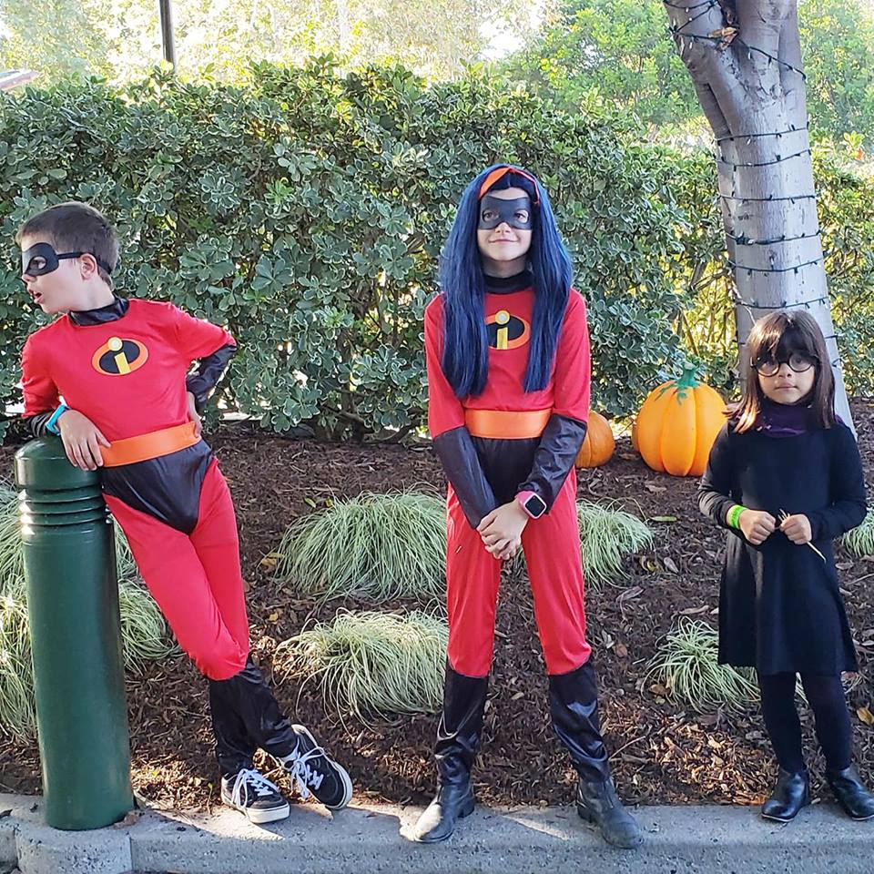 The Incredibles Disney Family Halloween Costumes