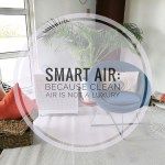 Smart Air: Because Clean Air is Not a Luxury
