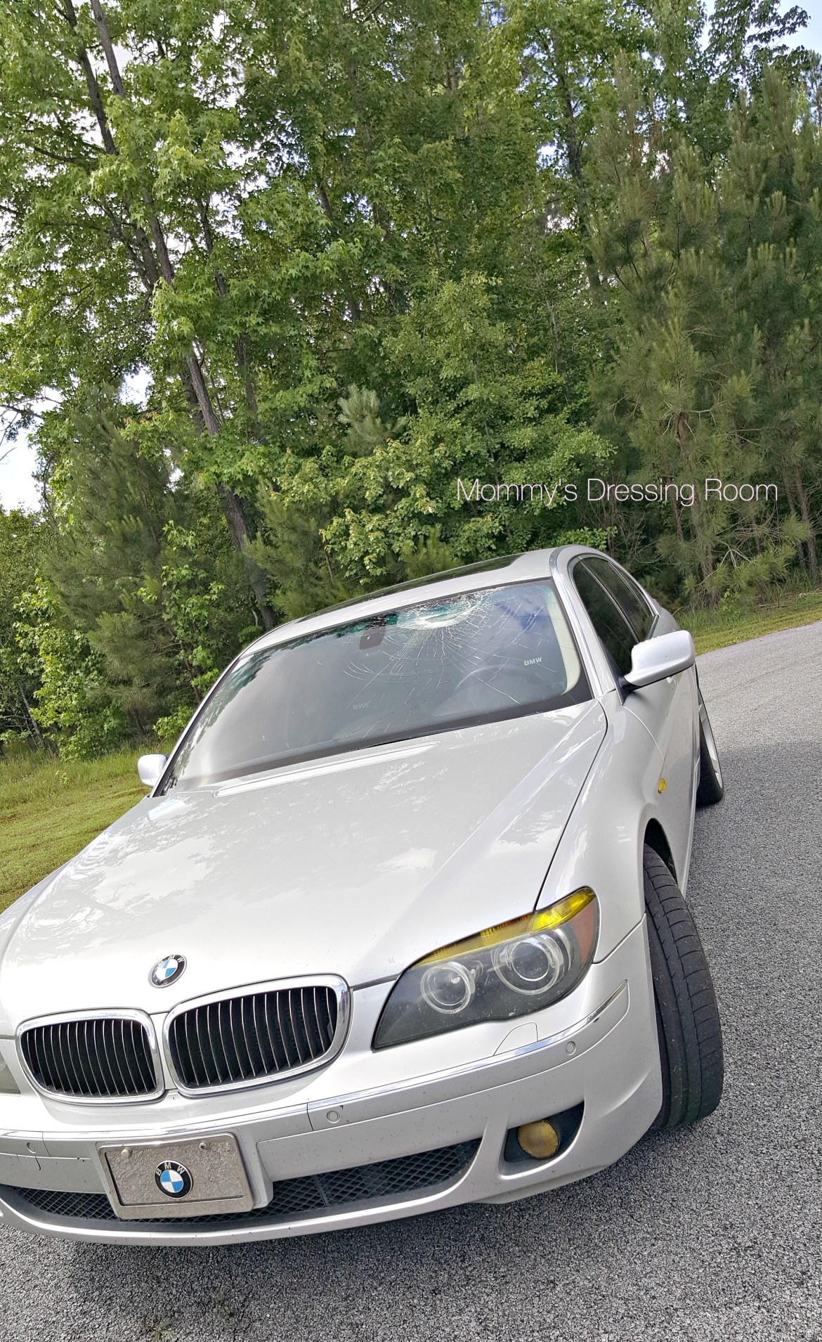 turkey-safelight-country road-bmw-windshield-virginia