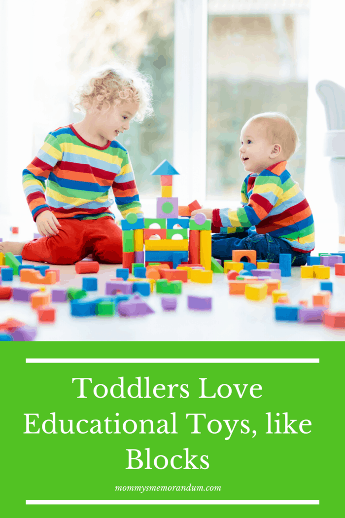 Great educational toys for toddlers include wood puzzles, shape sorters, soft blocks, and stacking toys.