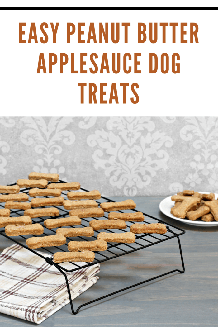 Make your own Peanut Butter Applesauce Dog Treats with this easy recipe your dog will love!