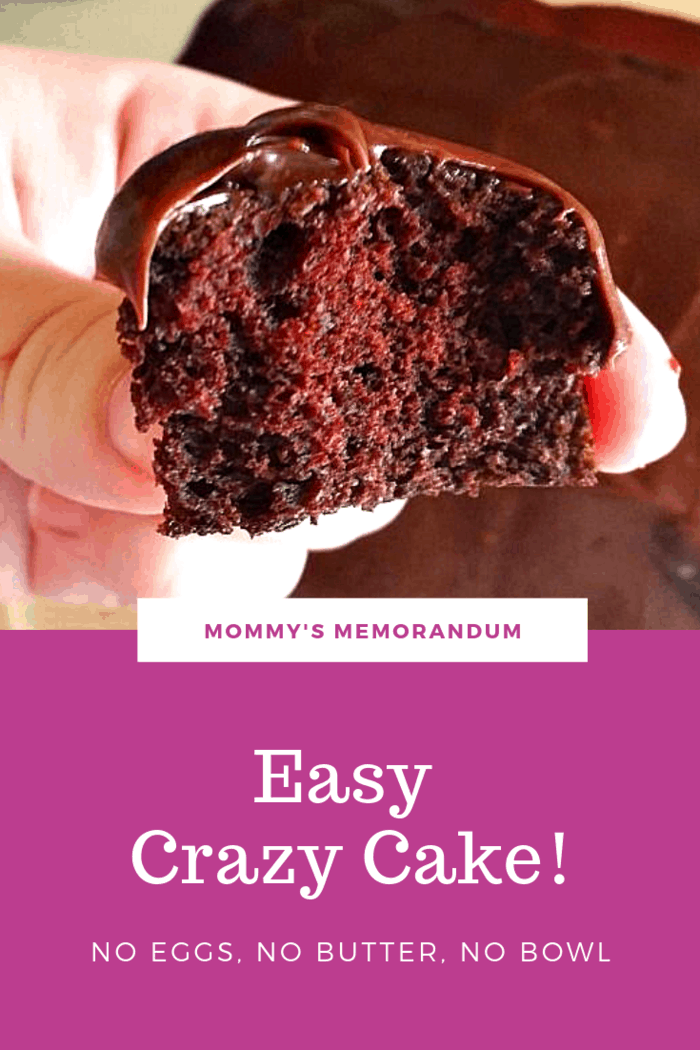 Crazy Cake Recipe (No Eggs, No Butter, No Bowl)