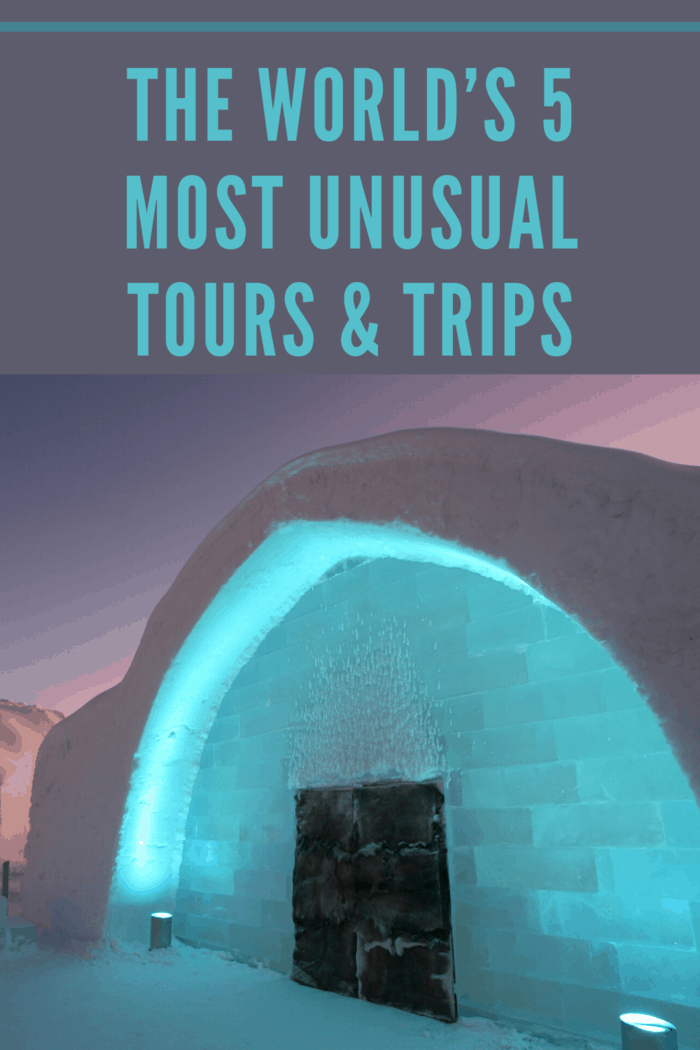 Check out one of these five unusual tours and trips from around the world., Established in 1989, the IceHotel is one of the world's only hotels made entirely of ice and snow.
