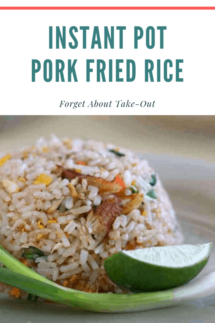 This Instant Pot Pork Fried Rice recipe is incredibly easy and satisfies the cravings. It's also extremely budget friendly so even if you have take-out, save some money and make this Pork Fried Rice while you're waiting for delivery!