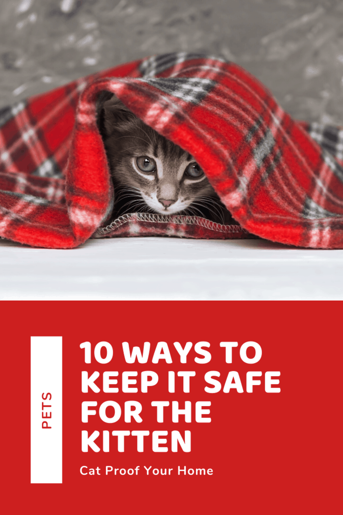 When it comes to giving medicines, however, you should consider all human meds as toxic to cats unless prescribed by a veterinarian.