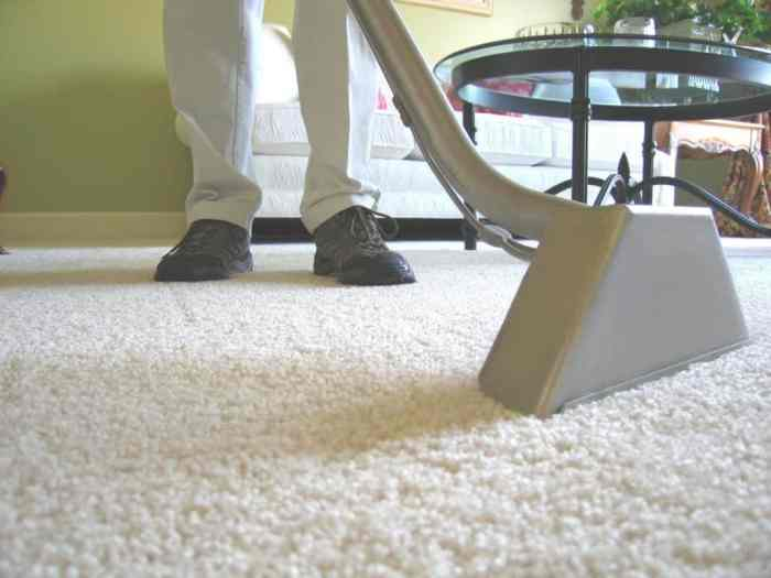 5 Tips for Keeping Your Carpet Clean If You Have Pets