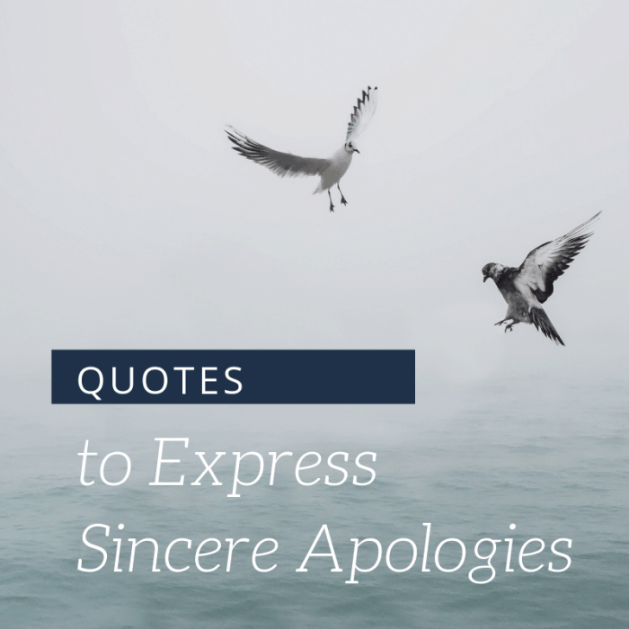 Quotes to Express Sincere Apologies