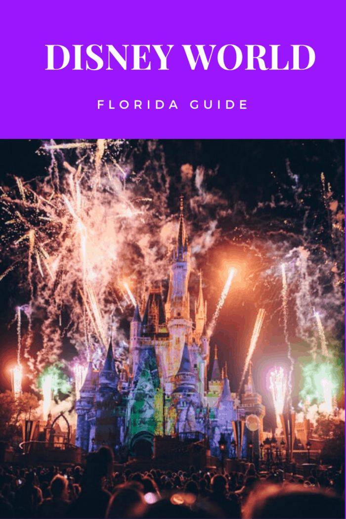 Disneyworld can be overwhelming if you are not used to it. To help you out, here is what you should expect when visiting the magical world of Disneyworld.