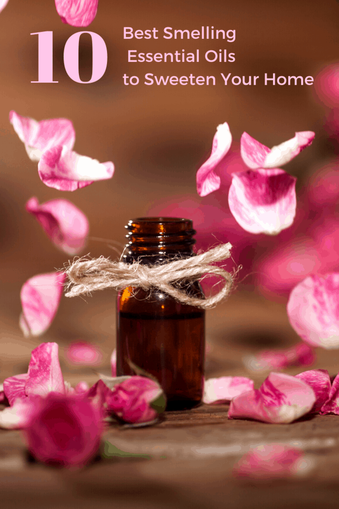 Geranium is actually a popular ingredient in some high-end perfumes, so it's no wonder that it can also help brighten up the smell of your home.