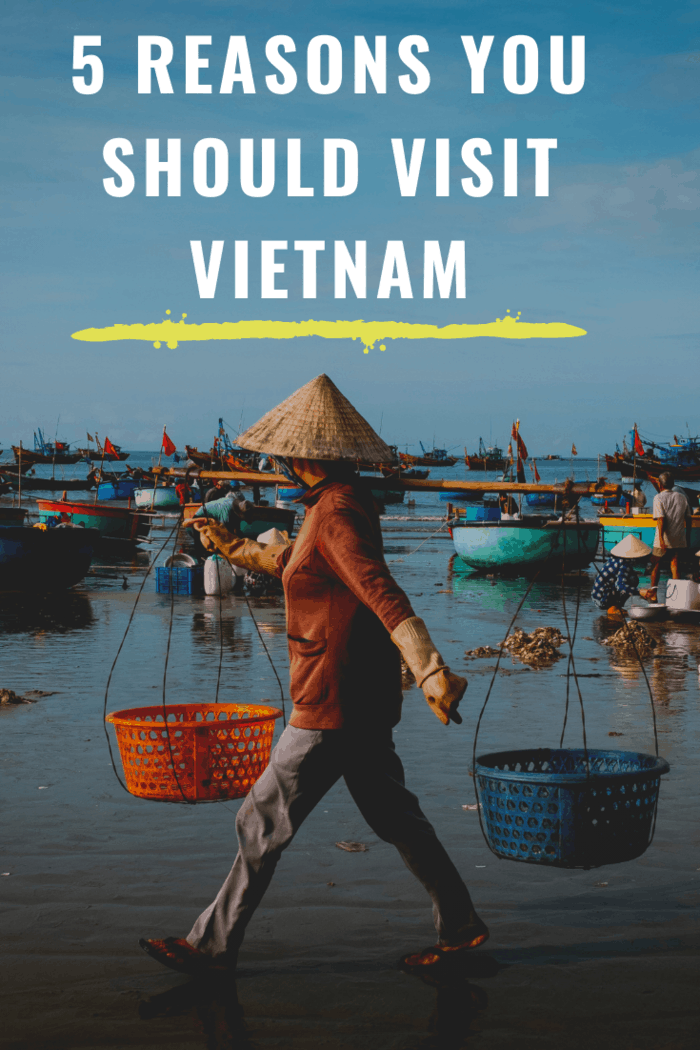 With such a long and varied history, you'll be spoiled for choice if you're looking to experience the culture of Vietnam.