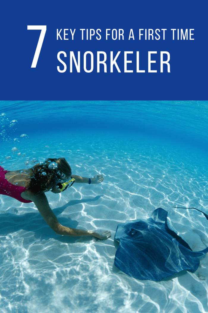 First-Time Snorkeler Make sure your mask fits snug to your face, but is also comfortable, so you won't be distracted during your dives.