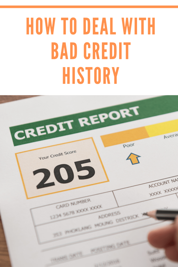 Anyone can get a free credit report every year by placing a request at the official websites accredited by the biggest credit reporting agencies.