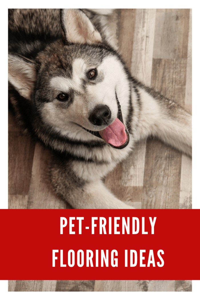 You can go for Brazilian cherry if you want a pet-friendly floor.