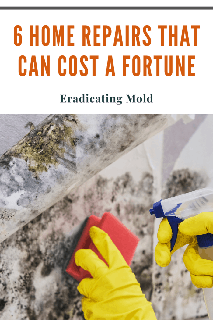 Mold is a problem that you can easily miss. It grows in the warm, dark areas you don't usually check up on that often. If you come across mold while cleaning or begin suffering ill effects and get your home tested, removing it can be a pain.