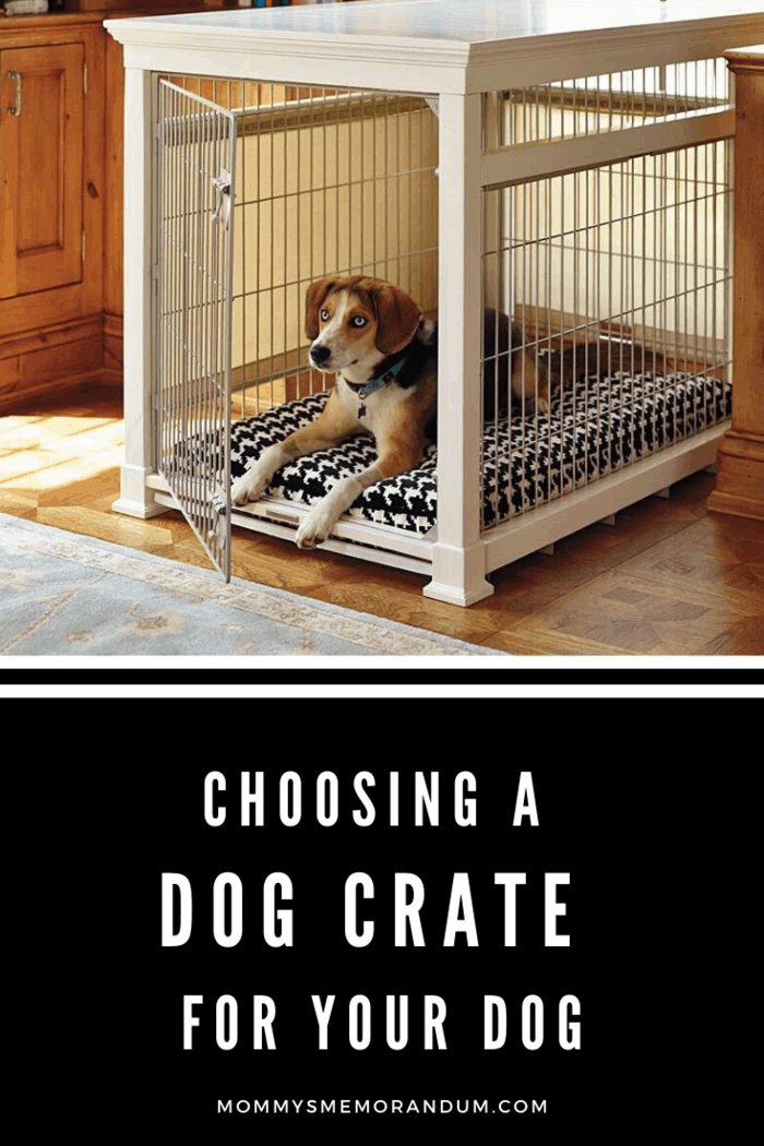 What are the Solutions for a Noisy Dog in a Crate?
