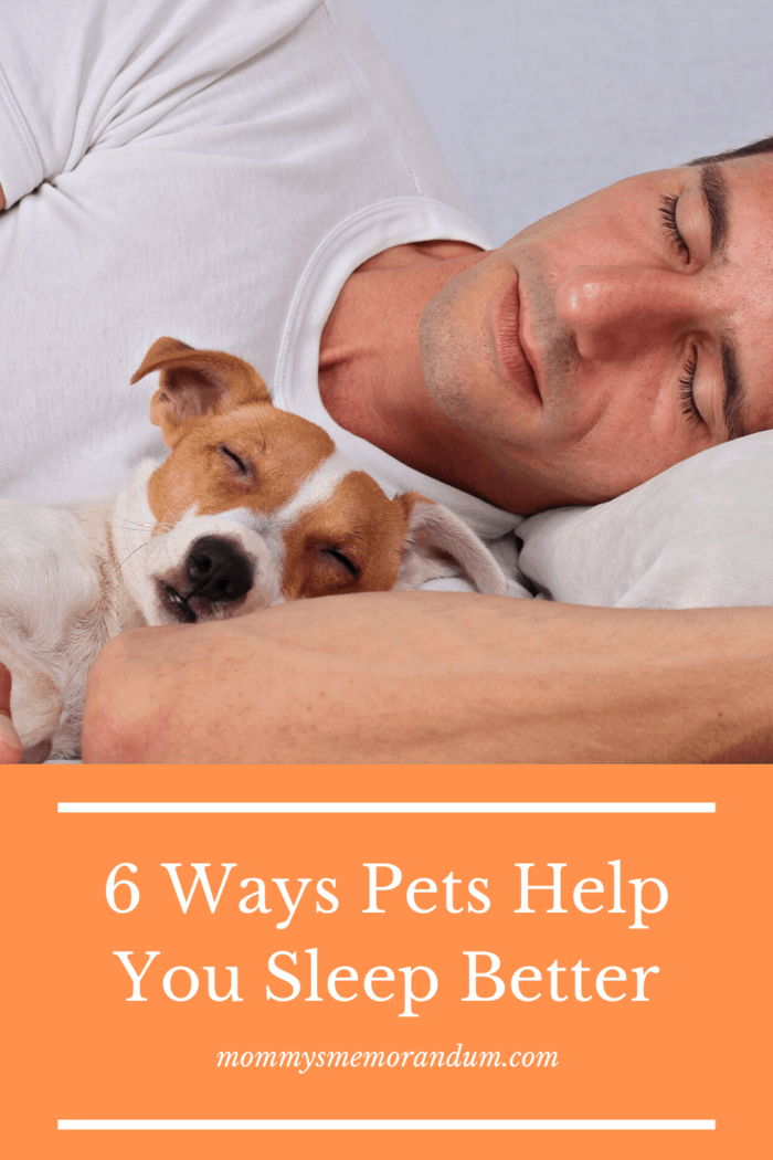 Because your dog can reduce hyperarousal and hypervigilance, they will, in turn, reduce your insomnia.
