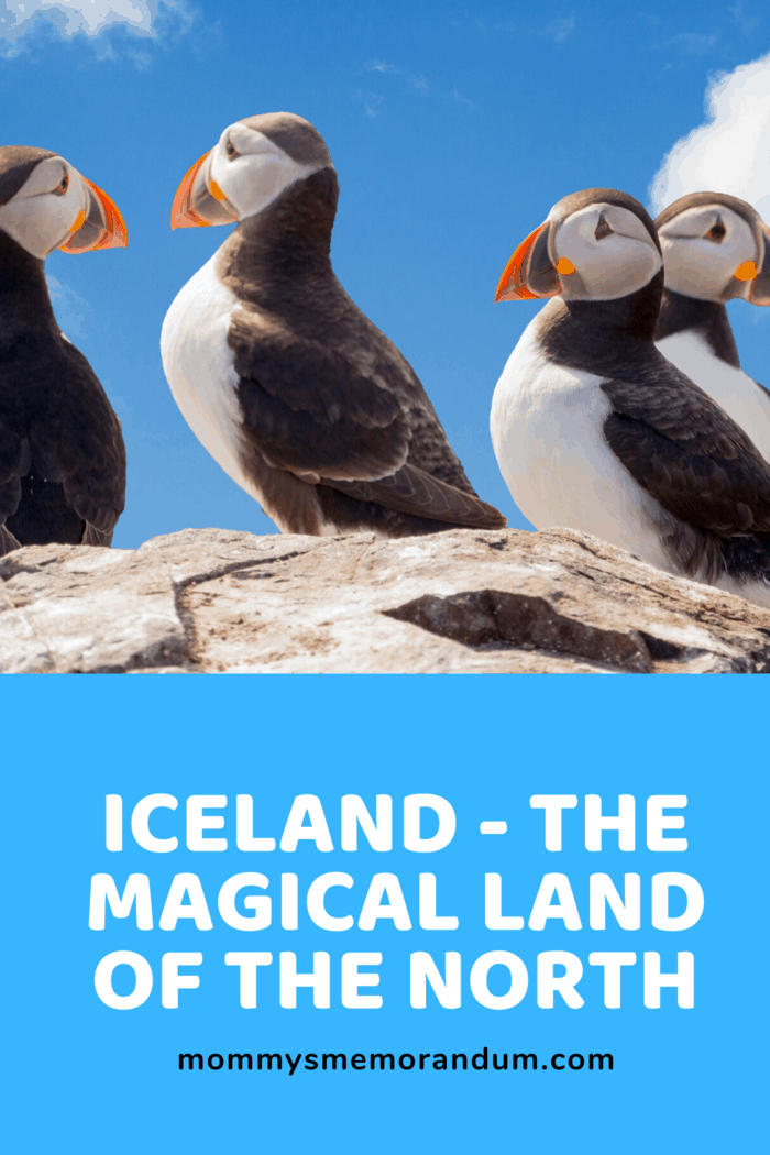 Every region of Iceland has what to offer the adventurous traveler.