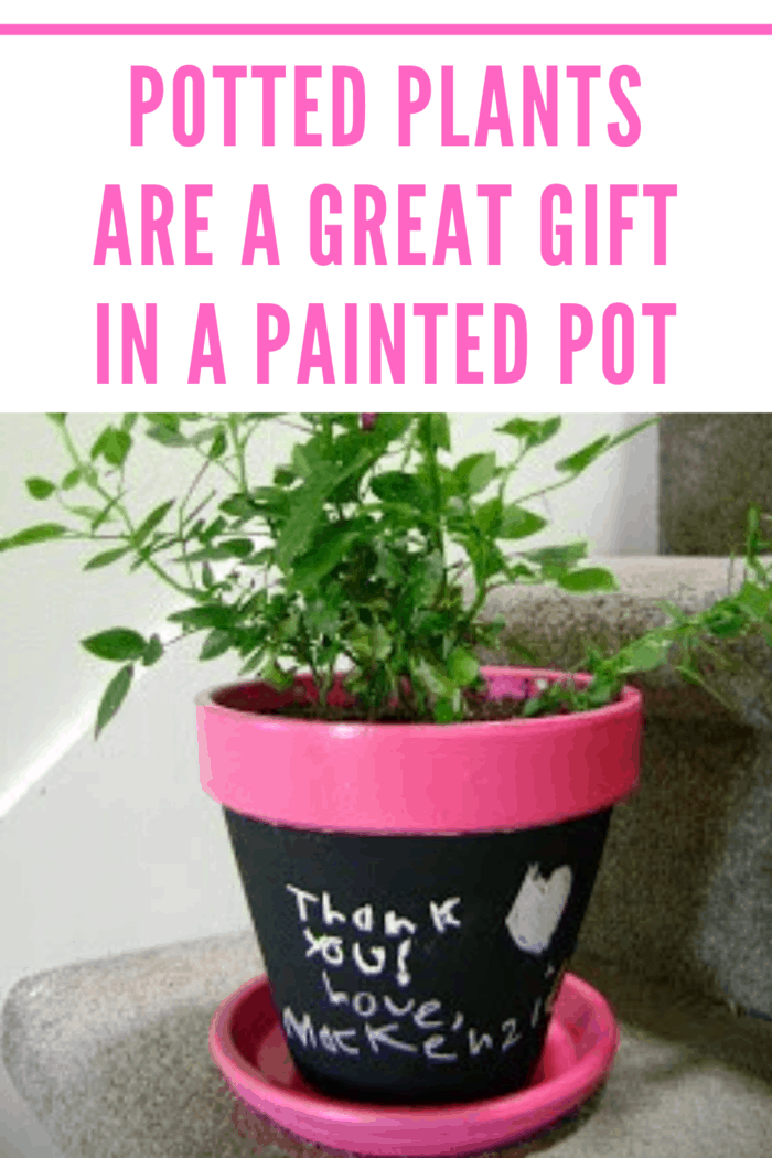 To add a bit more creativity to this gift idea, you can purchase paints and allow the kids to paint the pots uniquely for each teacher.