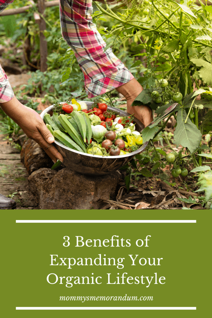 The decision to switch to an organic lifestyle goes beyond shopping for organic foods. Here are three benefits to expanding your organic lifestyle.
