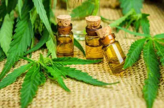 3 bottles of cbd lab tested oil with hemp leaves
