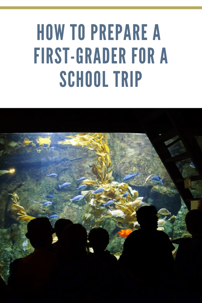 first grader school trip to aquarium