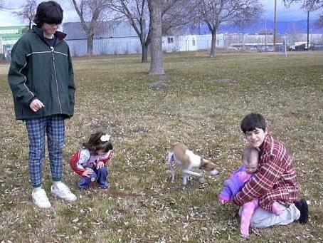 Benefits of Pet Adoption