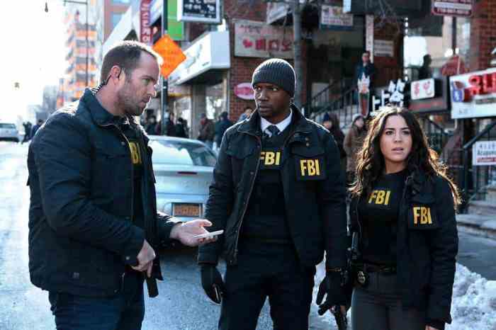 Blindspot S1_Episode 16_Any Wounded Thief_1