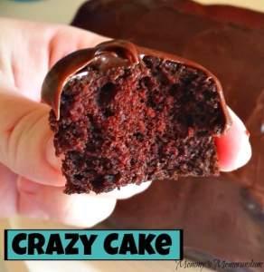 Crazy Cake Recipe (No Eggs, No Butter, No Bowl)