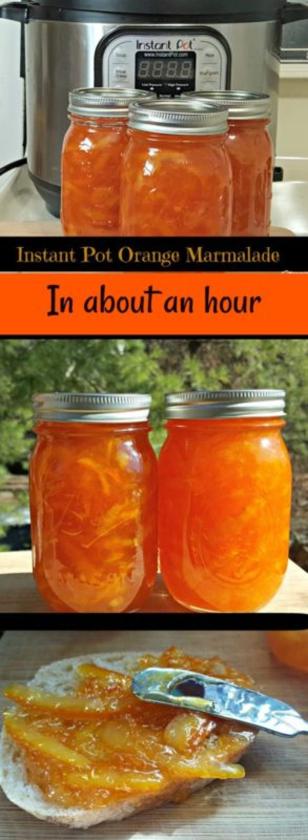 Instant Pot Orange Marmalade in about an hour