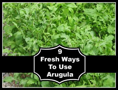 Nine Fresh Ways to Use Arugula