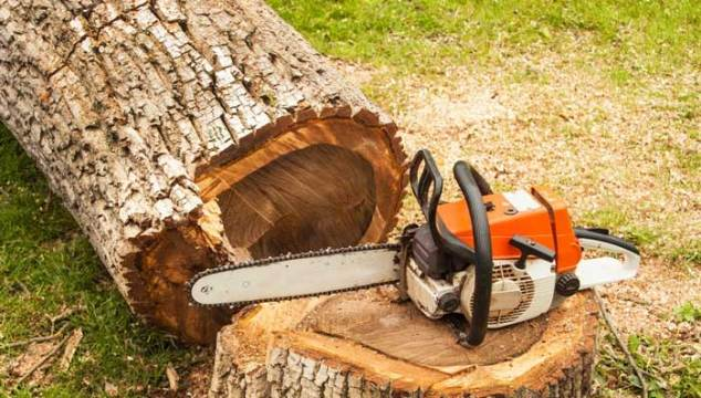 13 Chainsaw Safety Tips