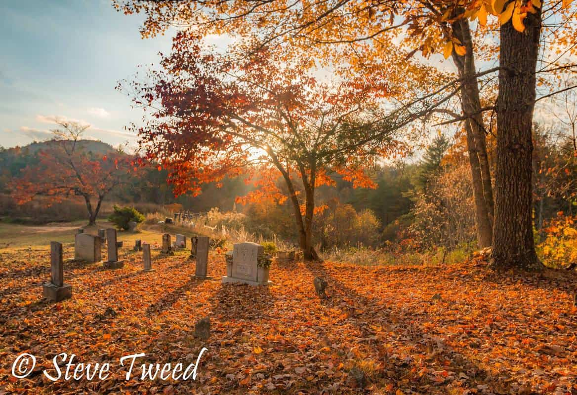 Steve Tweed Backlit shadows on cemetery